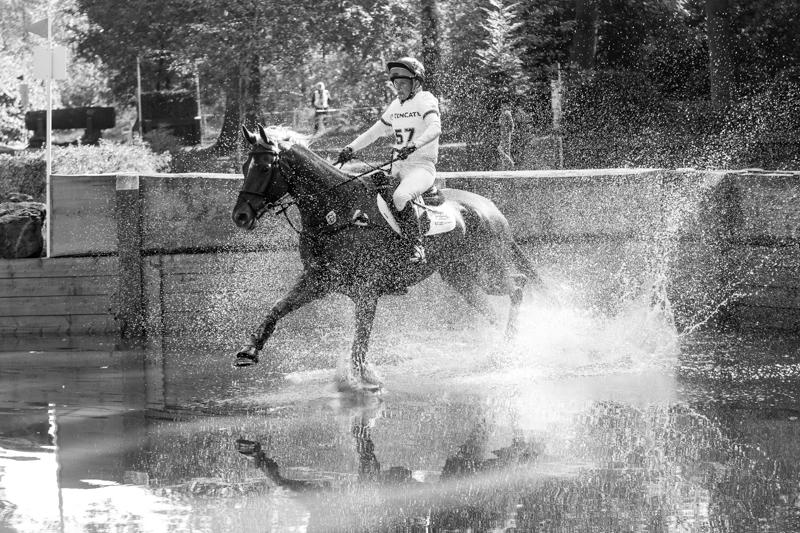 paarden (1 van 1)-2.jpg