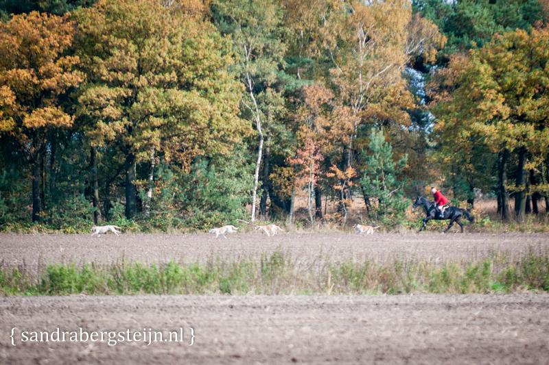 Jacht_oisterwijk (1 van 23).jpg