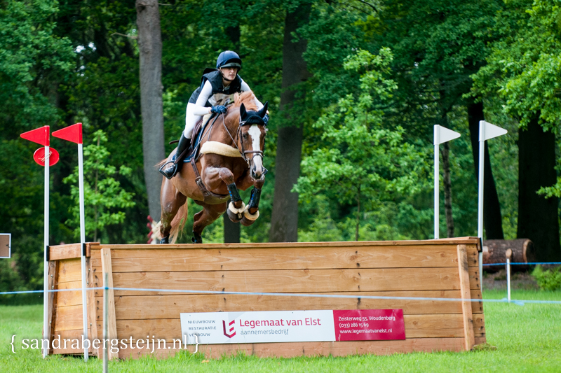 website_Eventing_Maarsbergen (1 van 29).jpg