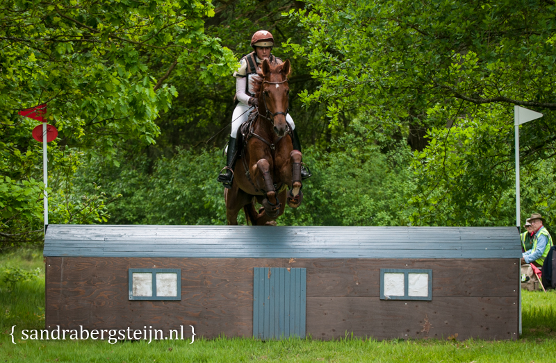 website_Eventing_Maarsbergen (19 van 29).jpg