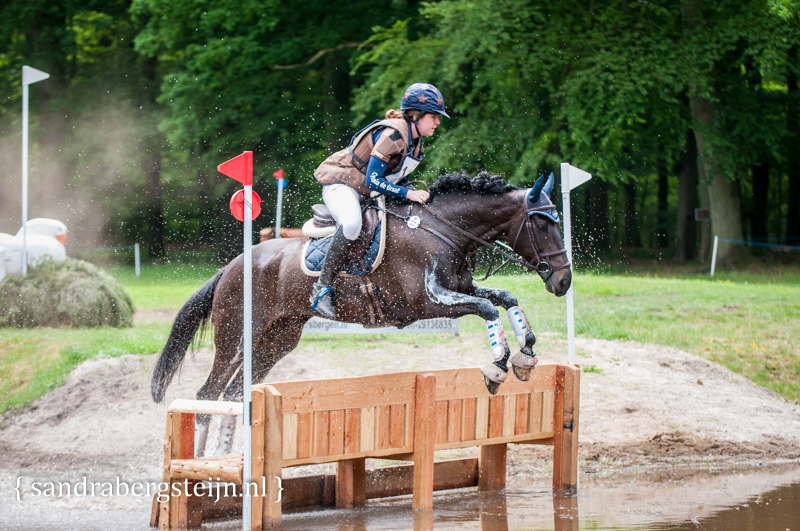 website_Eventing_Maarsbergen (3 van 29).jpg