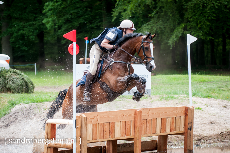 website_Eventing_Maarsbergen (4 van 29).jpg