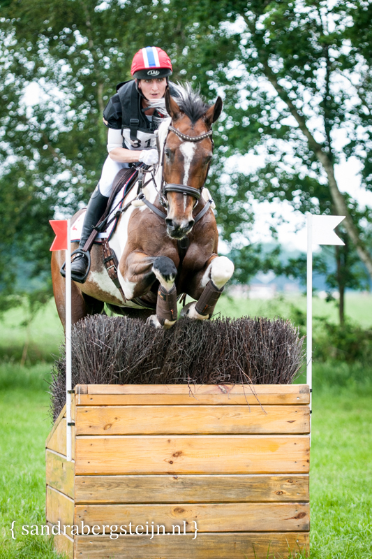 website_Eventing_Renswoude (12 van 66).jpg