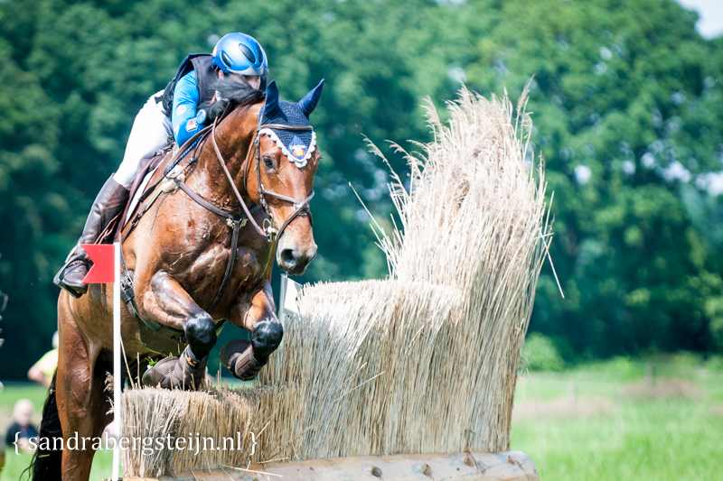 website_Eventing_Renswoude (19 van 66).jpg