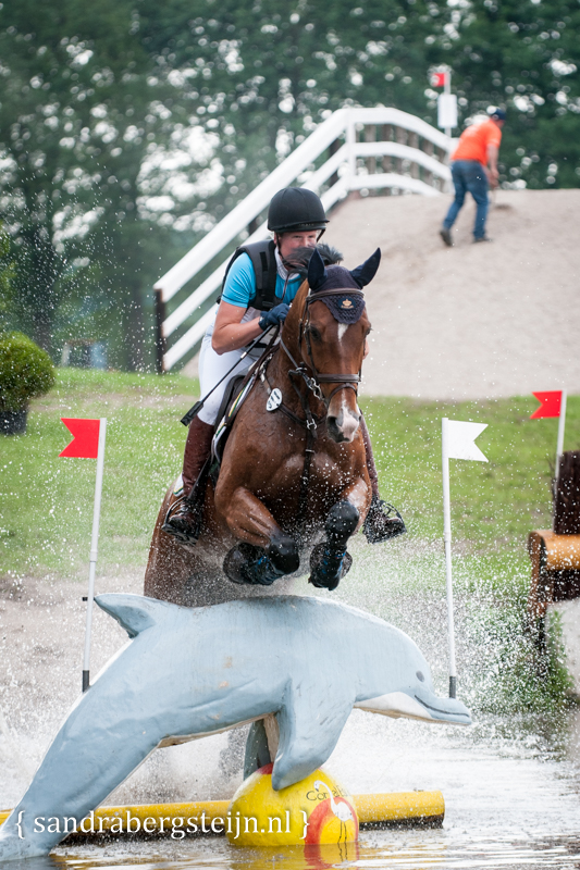 website_Eventing_Renswoude (44 van 66).jpg