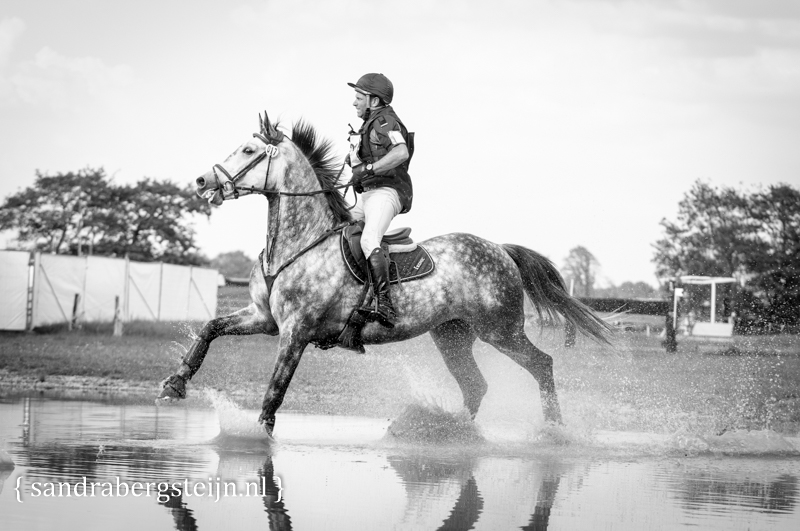 website_Eventing_Renswoude (51 van 66).jpg